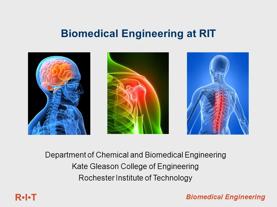 RITRIT Biomedical Engineering Biomedical Engineering at RIT Department of Chemical and Biomedical Engineering Kate Gleason College of Engineering Rochester Institute of Technology