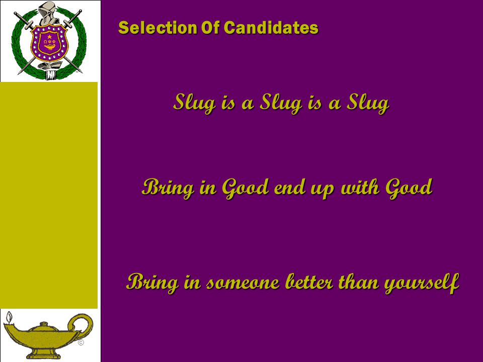 © Slug is a Slug is a Slug Bring in Good end up with Good Bring in someone better than yourself Selection Of Candidates