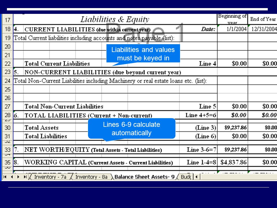 Liabilities and values must be keyed in Lines 6-9 calculate automatically