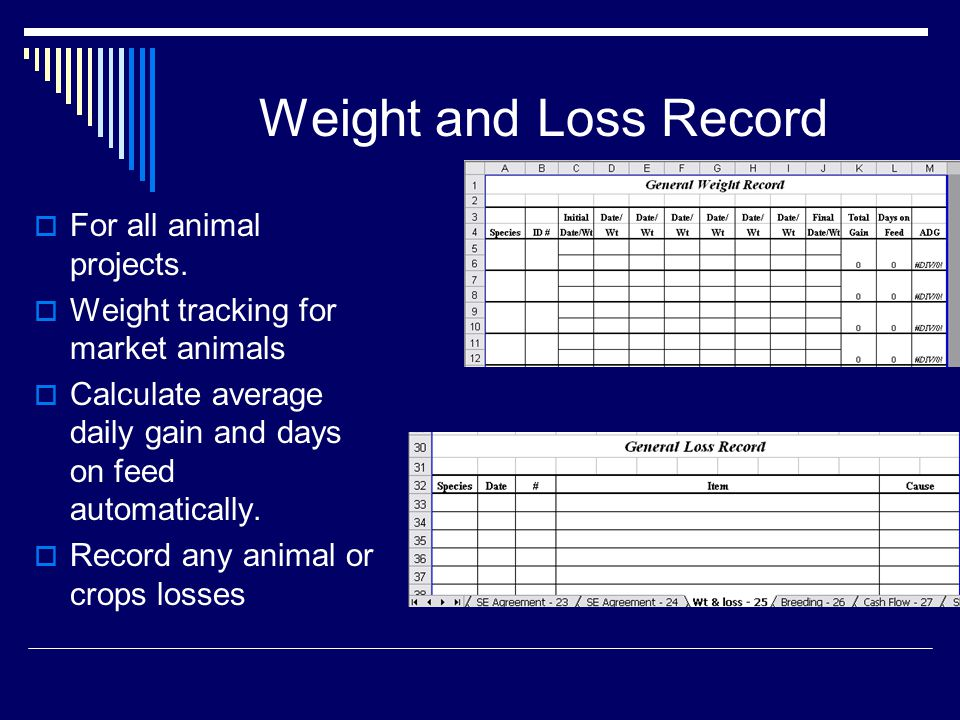 Weight and Loss Record  For all animal projects.