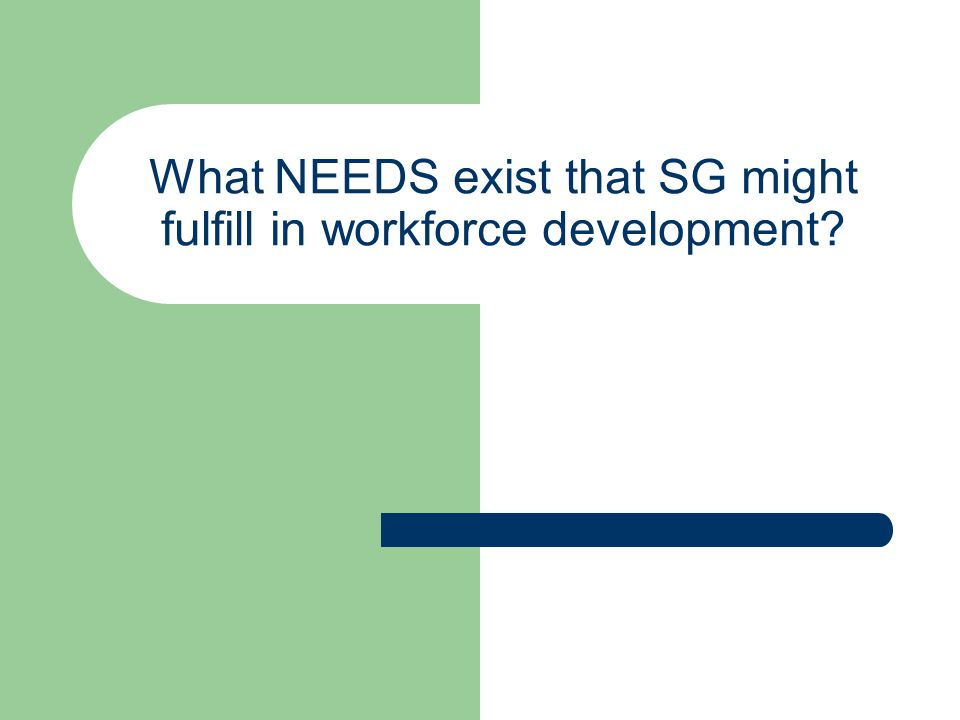 What NEEDS exist that SG might fulfill in workforce development?
