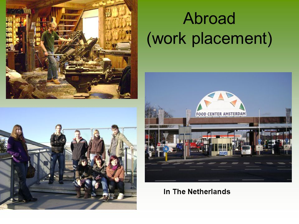 Abroad (work placement) In The Netherlands