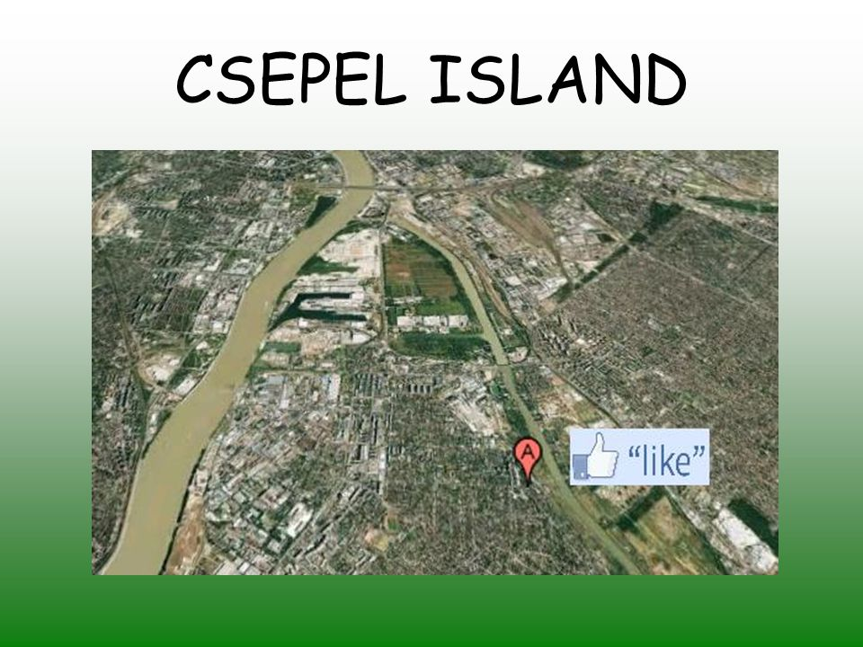 The school is located next to the river Danube.It was opened in 1986 on Csepel island.