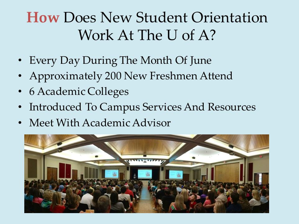 How Does New Student Orientation Work At The U of A.