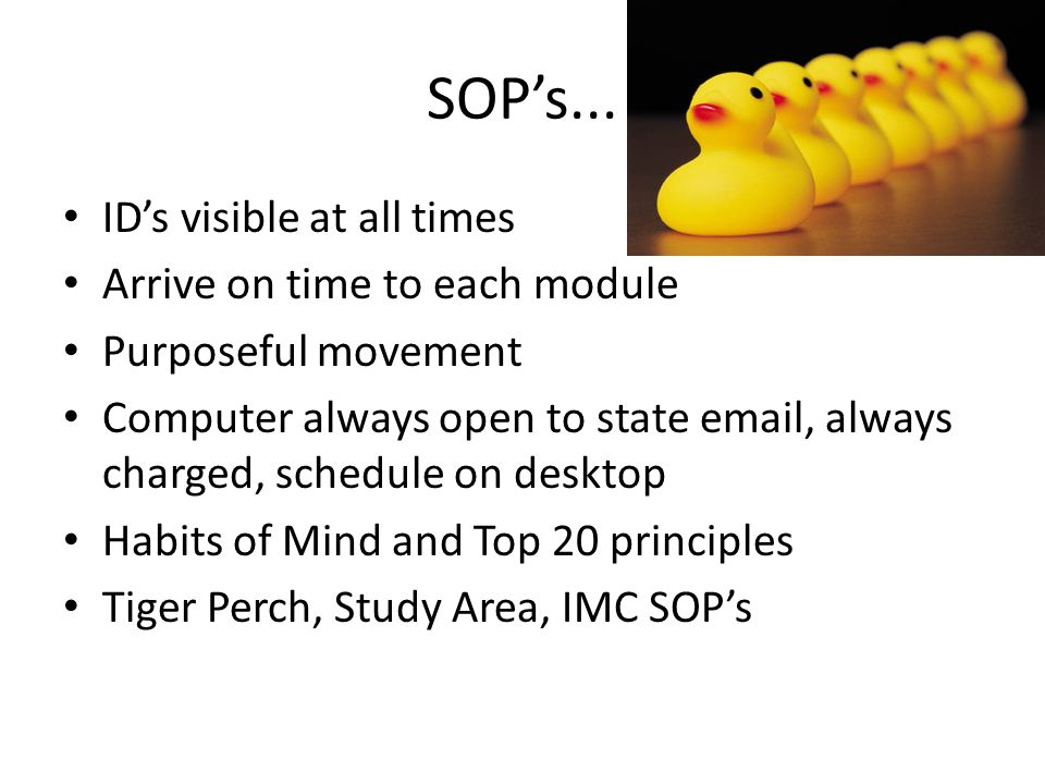 SOP's... ID's visible at all times Arrive on time to each module Purposeful movement Computer always open to state email, always charged, schedule on