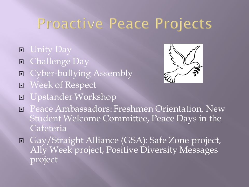  Unity Day  Challenge Day  Cyber-bullying Assembly  Week of Respect  Upstander Workshop  Peace Ambassadors: Freshmen Orientation, New Student Welcome Committee, Peace Days in the Cafeteria  Gay/Straight Alliance (GSA): Safe Zone project, Ally Week project, Positive Diversity Messages project