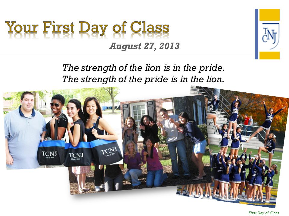 August 27, 2013 The strength of the lion is in the pride.