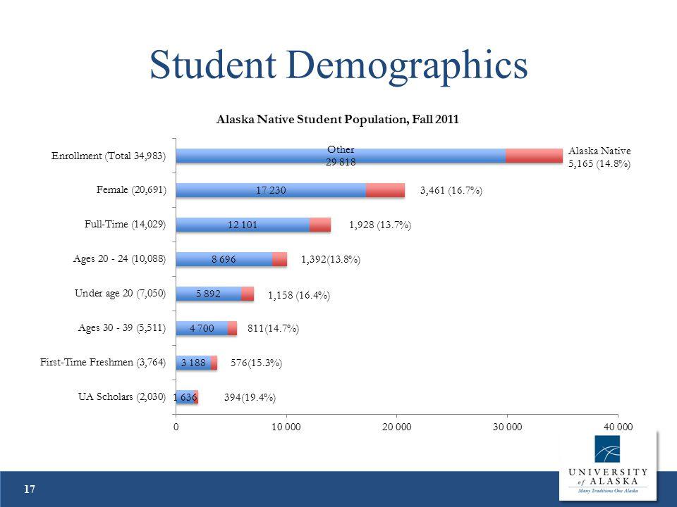 Student Demographics 17