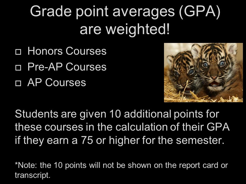 Grade point averages (GPA) are weighted.