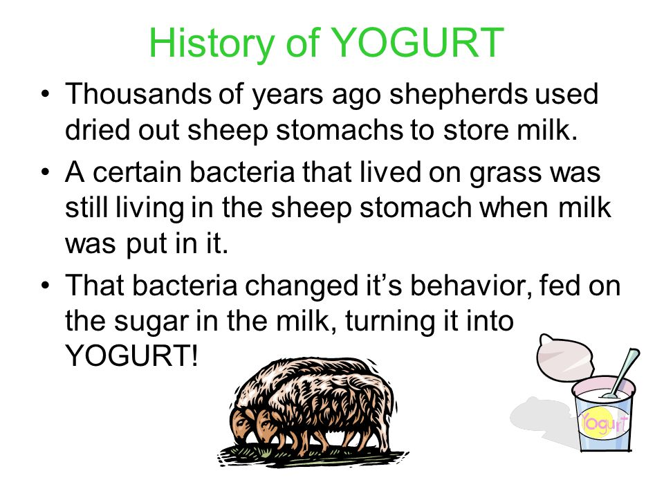 History of YOGURT Thousands of years ago shepherds used dried out sheep stomachs to store milk.