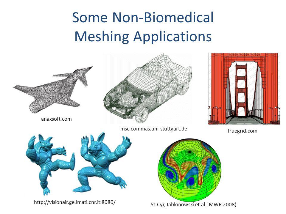 Some Non-Biomedical Meshing Applications anaxsoft.com msc.commas.uni-stuttgart.de Truegrid.com http://visionair.ge.imati.cnr.it:8080/ St-Cyr, Jablonowski et al., MWR 2008)