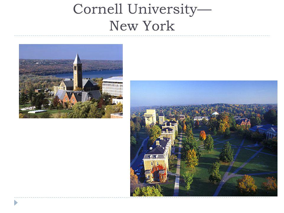 Cornell University— New York