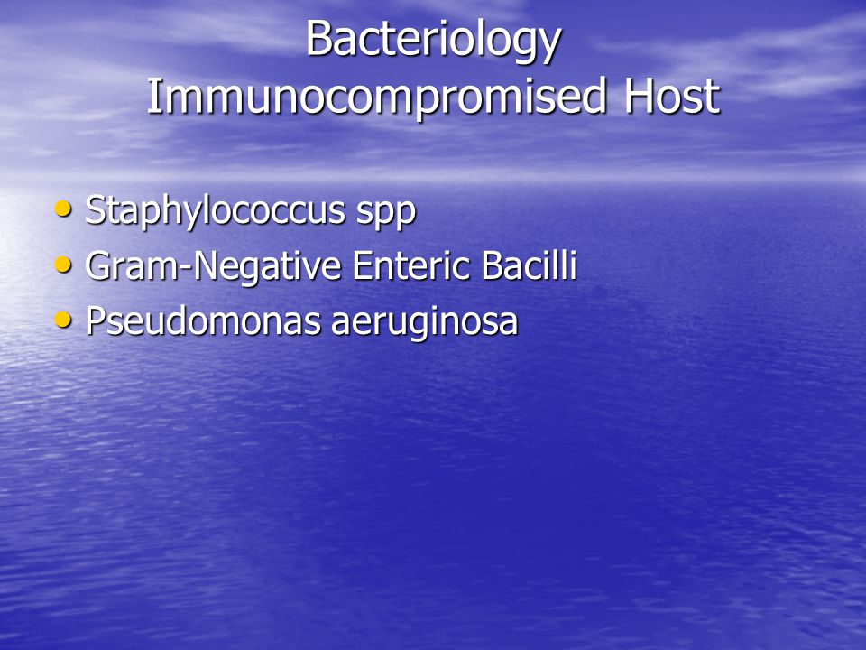 Bacteriology Immunocompromised Host Staphylococcus spp Staphylococcus spp Gram-Negative Enteric Bacilli Gram-Negative Enteric Bacilli Pseudomonas aeruginosa Pseudomonas aeruginosa
