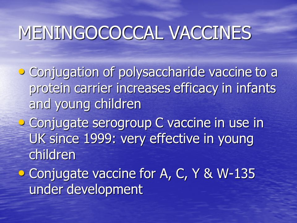MENINGOCOCCAL VACCINES Conjugation of polysaccharide vaccine to a protein carrier increases efficacy in infants and young children Conjugation of polysaccharide vaccine to a protein carrier increases efficacy in infants and young children Conjugate serogroup C vaccine in use in UK since 1999: very effective in young children Conjugate serogroup C vaccine in use in UK since 1999: very effective in young children Conjugate vaccine for A, C, Y & W-135 under development Conjugate vaccine for A, C, Y & W-135 under development