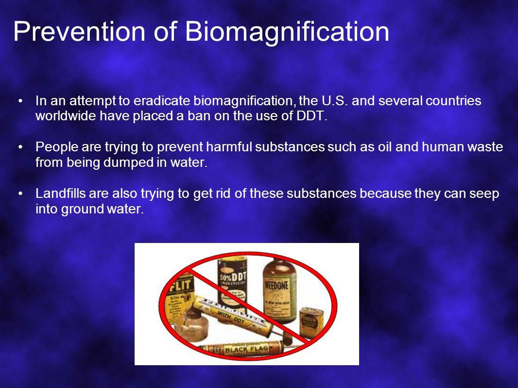 Prevention of Biomagnification In an attempt to eradicate biomagnification, the U.S.
