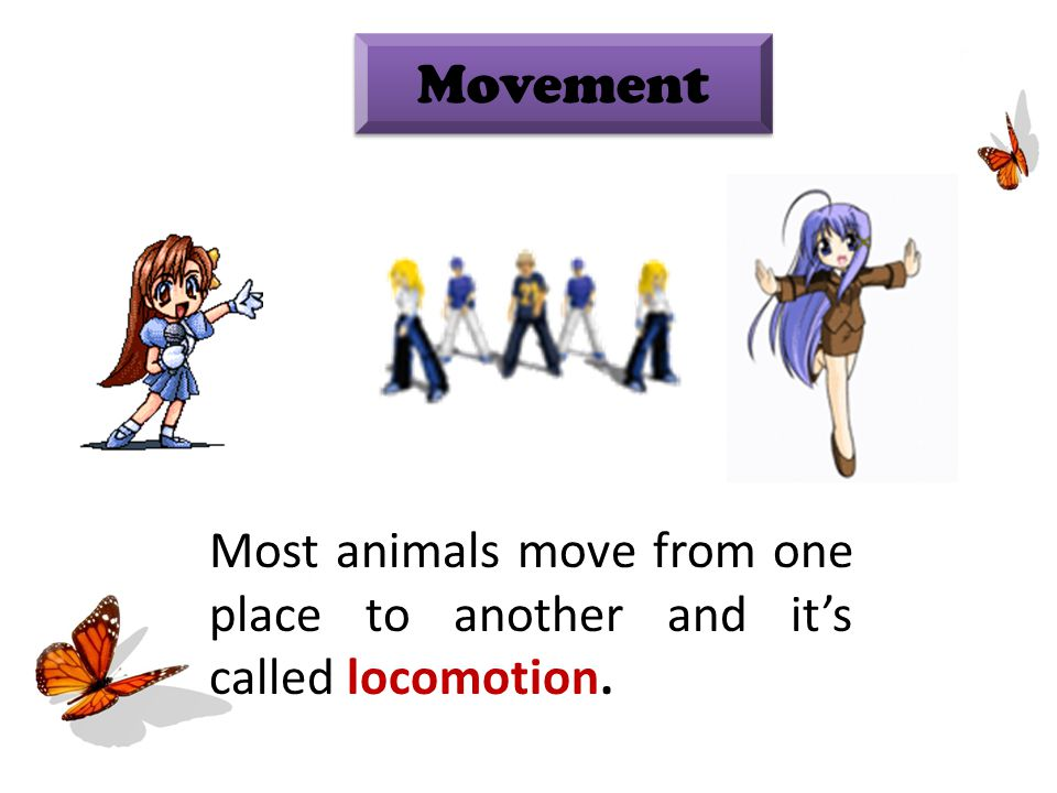 Movement Most animals move from one place to another and it's called locomotion.