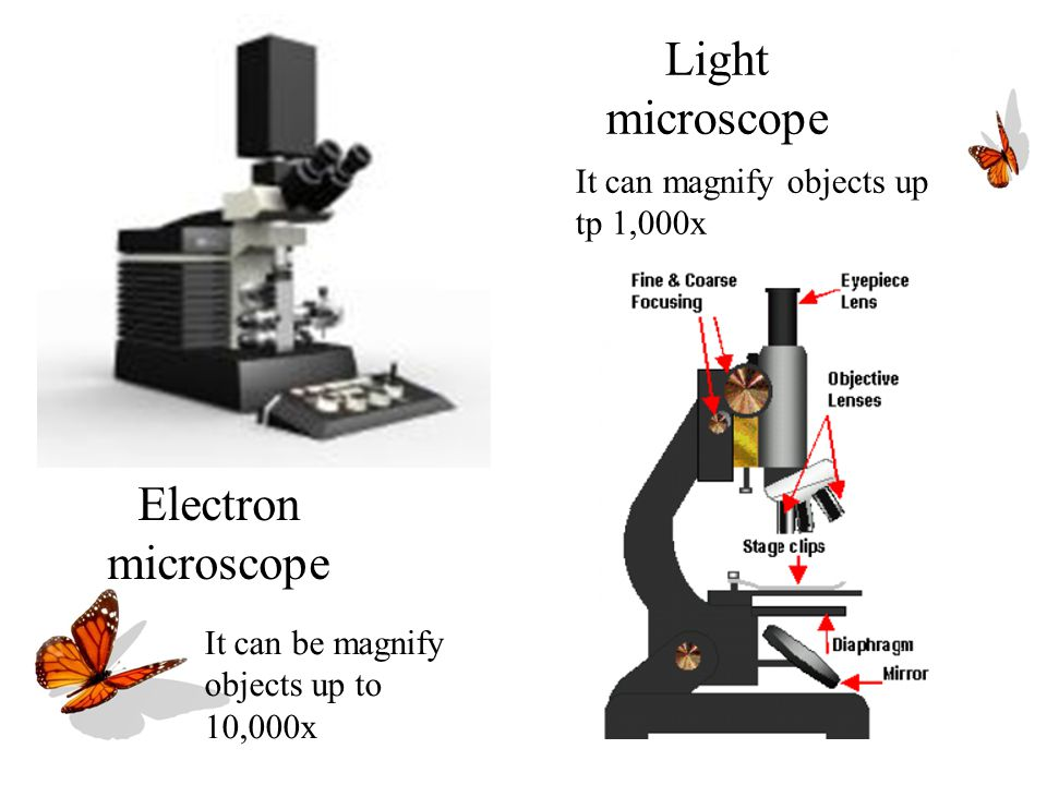 Electron microscope Light microscope It can magnify objects up tp 1,000x It can be magnify objects up to 10,000x