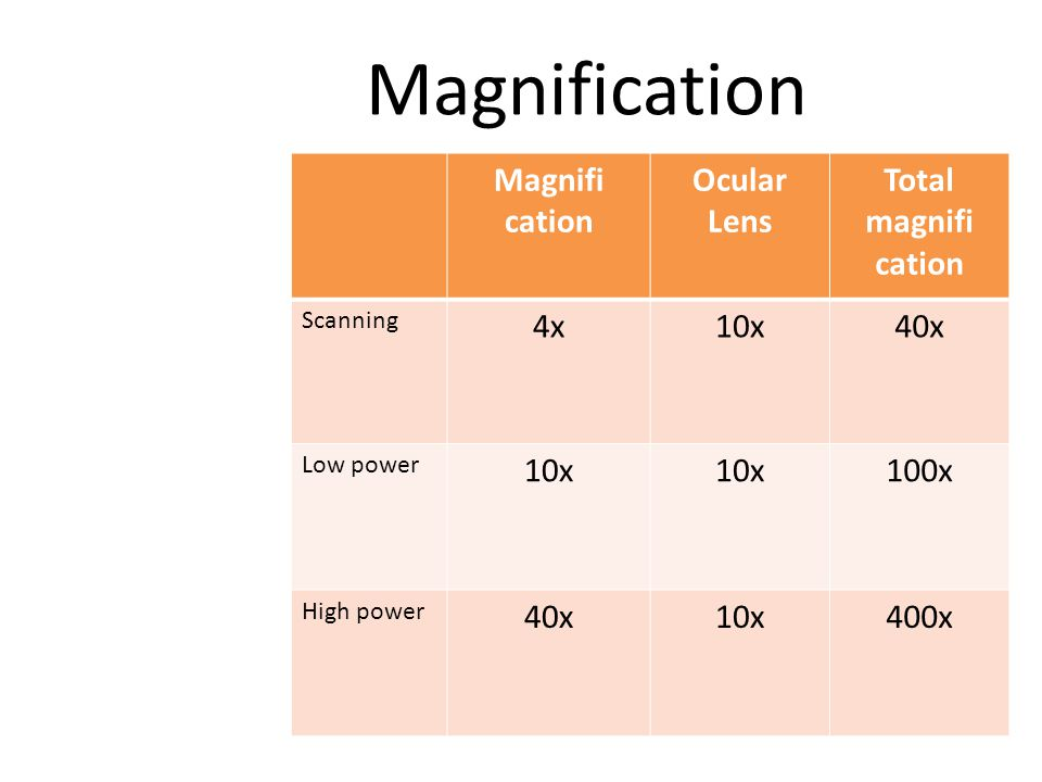 Magnification Magnifi cation Ocular Lens Total magnifi cation Scanning 4x10x40x Low power 10x 100x High power 40x10x400x