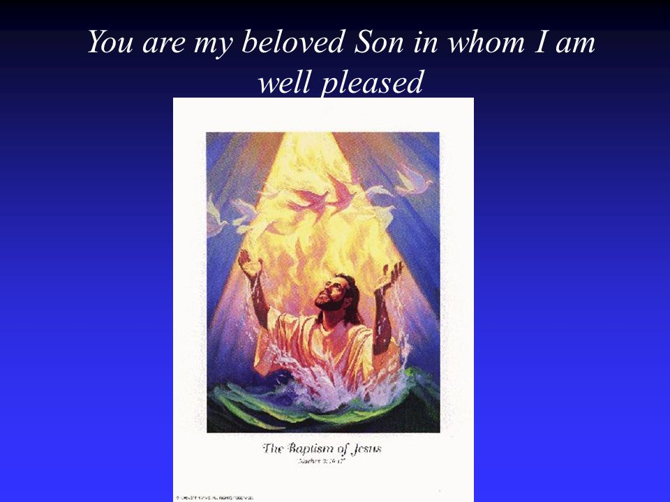 You are my beloved Son in whom I am well pleased