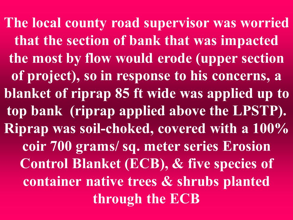 The local county road supervisor was worried that the section of bank that was impacted the most by flow would erode (upper section of project), so in