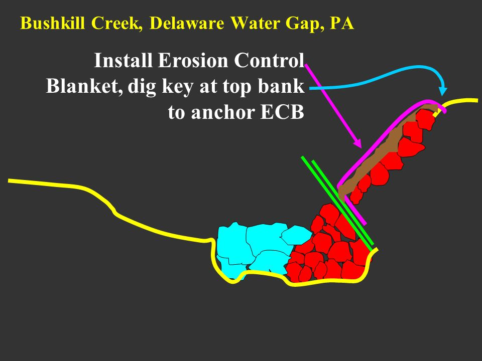 Bushkill Creek, Delaware Water Gap, PA Install Erosion Control Blanket, dig key at top bank to anchor ECB
