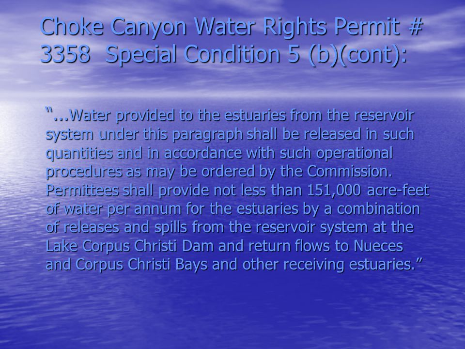 Background (cont.) Construction Completed 1982 Construction Completed 1982 Inundation Occurred 1987 Inundation Occurred 1987 Letter of Inquiry Received 1989 Letter of Inquiry Received 1989 Texas Water Commission Took Jurisdiction in Spring 1990 Texas Water Commission Took Jurisdiction in Spring 1990 Creation of Technical Advisory Committee Creation of Technical Advisory Committee TAC—Characterization Study and Final Report to Hearings Examiner TAC—Characterization Study and Final Report to Hearings Examiner