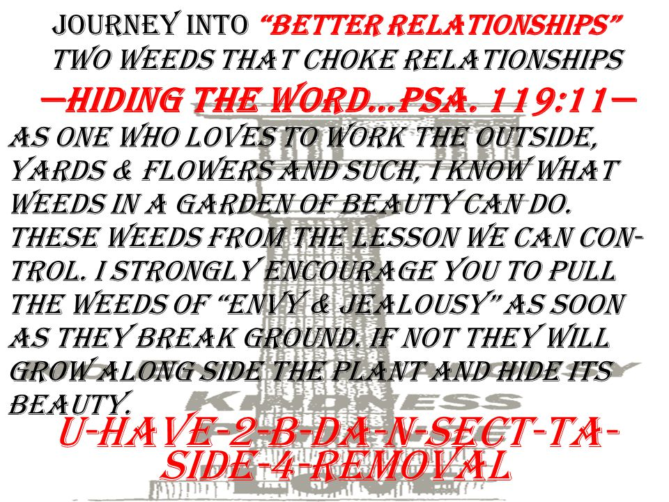 """Journey into """"Better Relationships"""" two weeds that choke Relationships I.Insecurities That Damage B. 2 nd, the remedy for envy and jealousy —Do these"""