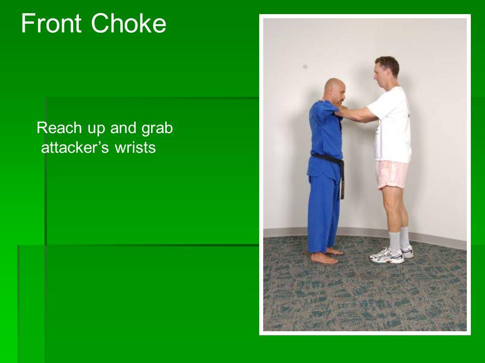 Back kick Rear Choke