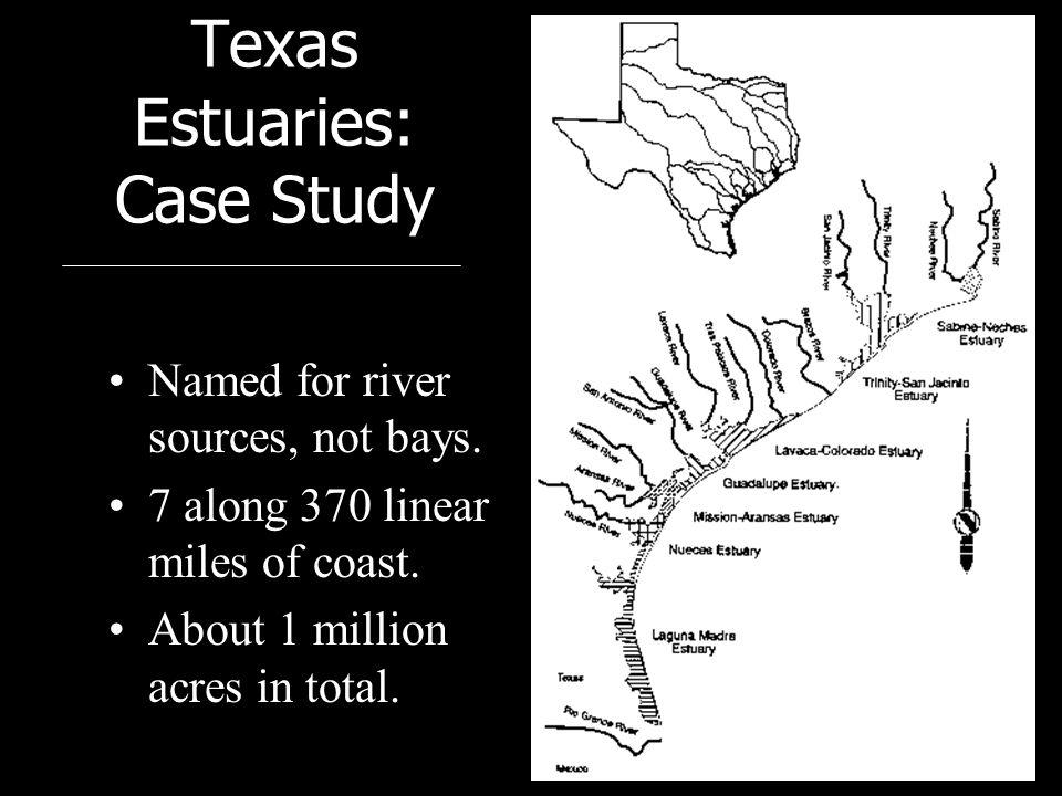 Nueces Watershed History La Fruta Dam (old Lake Corpus Christi) –Built in 1935; storage capacity of ~55,000 acre-ft Wesley Seale Dam (Lake Corpus Christi) –Built in 1958; storage capacity of ~300,000 acre-ft (257,260) Choke Canyon Dam –Built in 1982; storage capacity of ~700,000 acre-ft (695,271)
