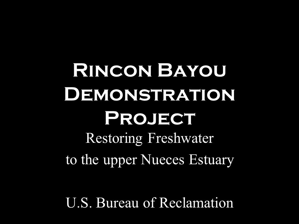 Rincon Bayou Demonstration Project Restoring Freshwater to the upper Nueces Estuary U.S.