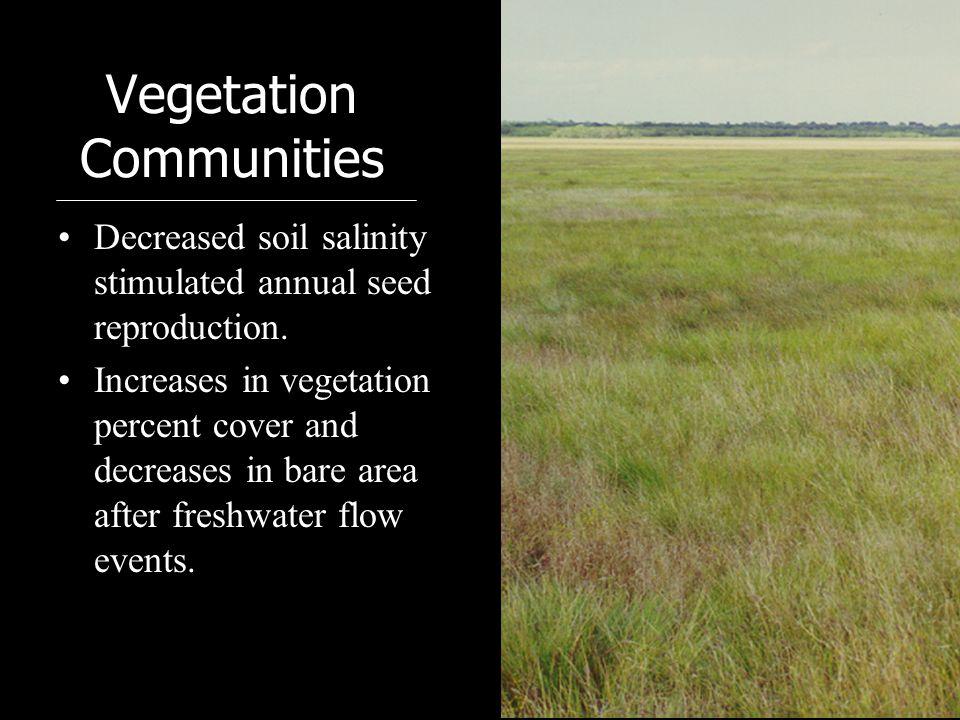 Vegetation Communities Decreased soil salinity stimulated annual seed reproduction.
