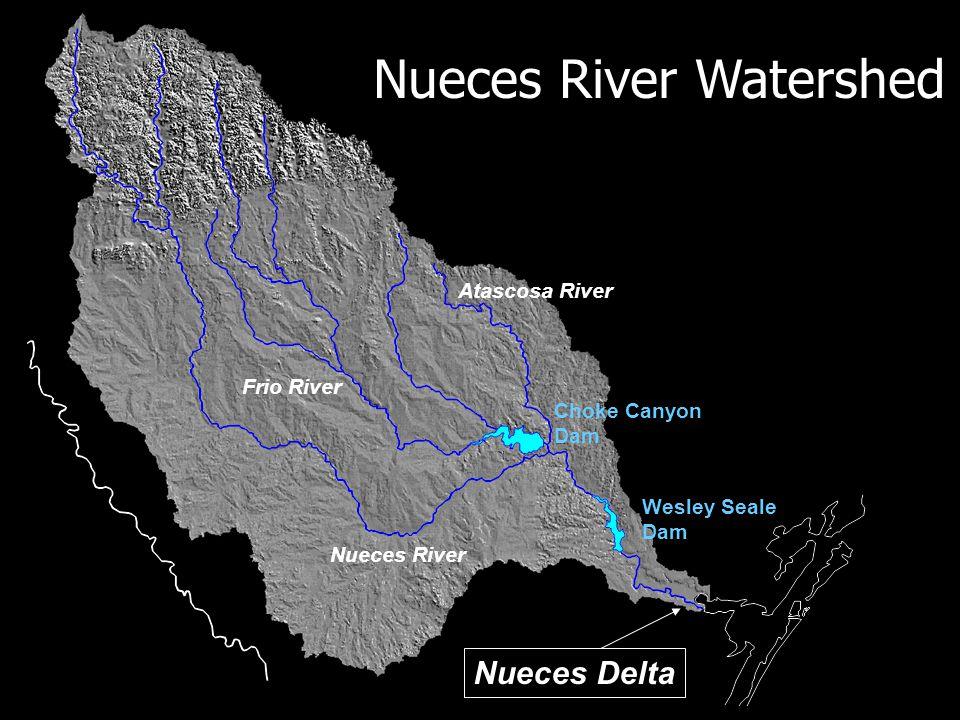 Nueces River Frio River Atascosa River Wesley Seale Dam Choke Canyon Dam Nueces Delta Nueces River Watershed