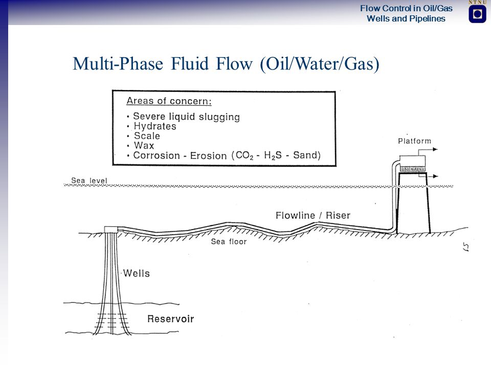 Flow Control in Oil/Gas Wells and Pipelines Multi-Phase Fluid Flow (Oil/Water/Gas)