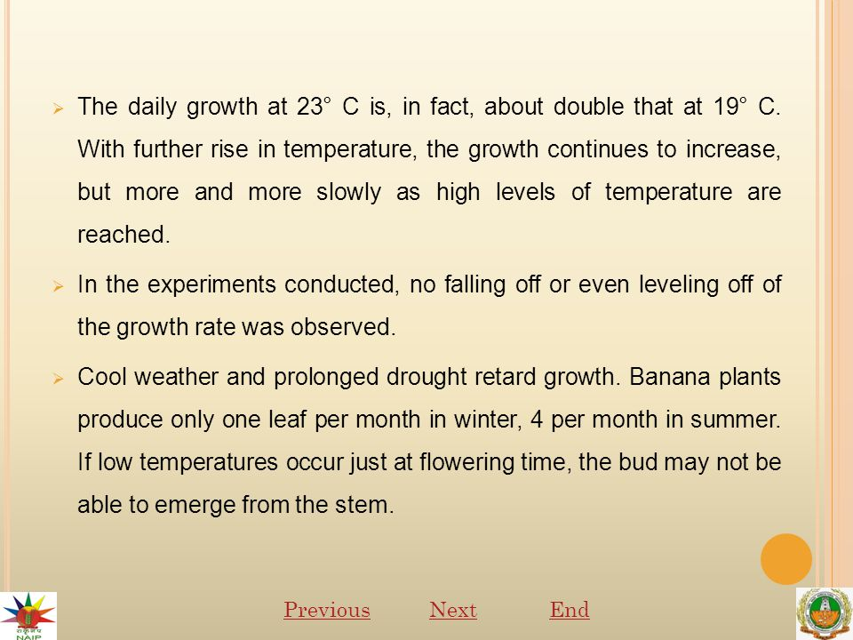  The daily growth at 23° C is, in fact, about double that at 19° C.