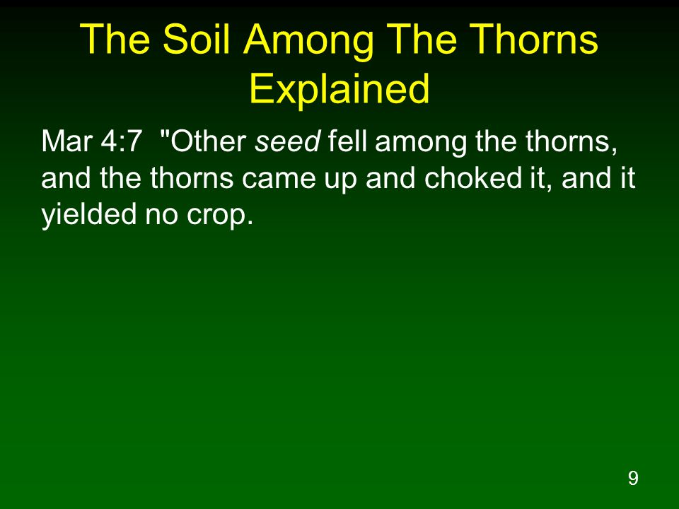 9 The Soil Among The Thorns Explained Mar 4:7