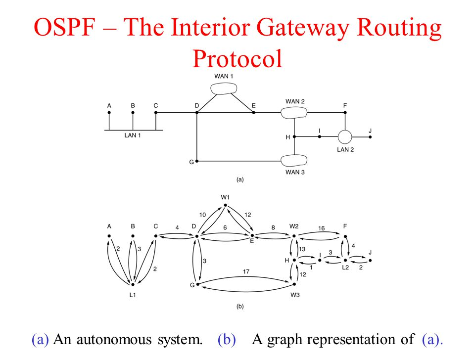 OSPF – The Interior Gateway Routing Protocol (a) An autonomous system.
