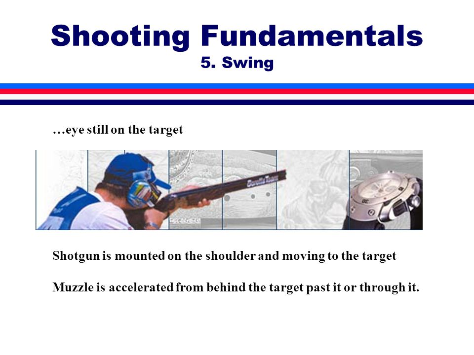 Shooting Fundamentals 5. Swing …eye still on the target Shotgun is mounted on the shoulder and moving to the target Muzzle is accelerated from behind