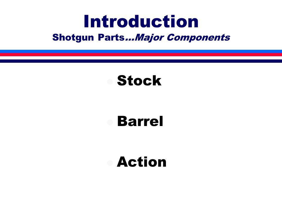 Introduction Shotgun Parts…Major Components l Stock l Barrel l Action
