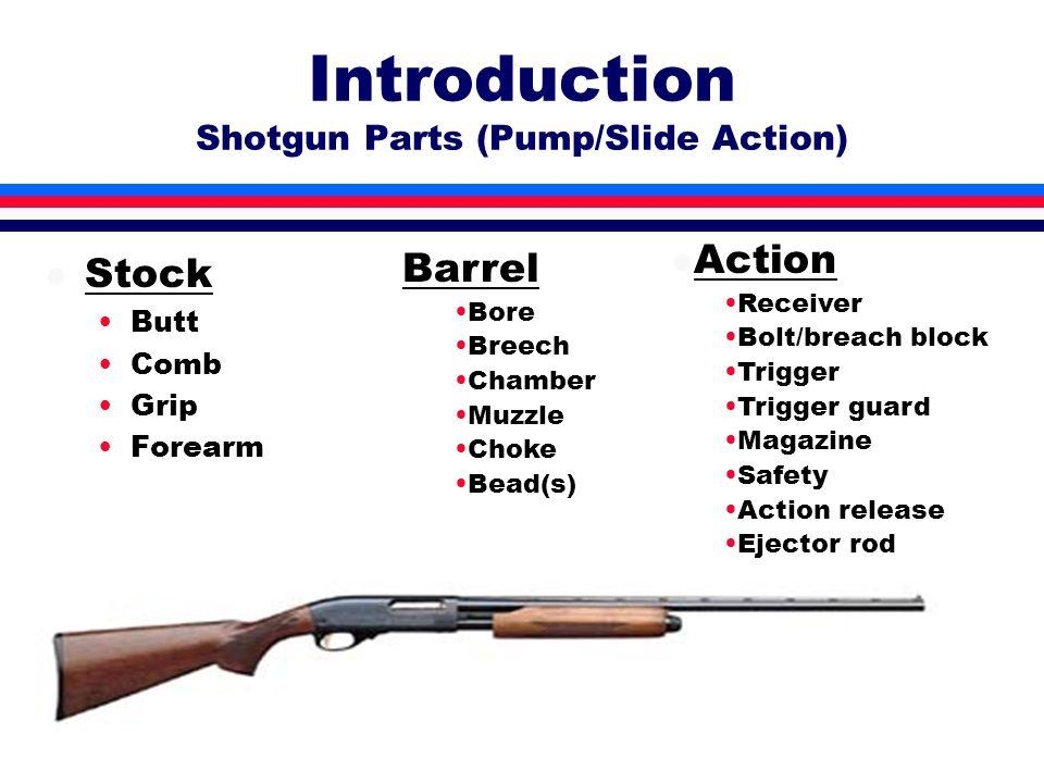 Introduction to Shooting Shooting Straightaway Targets l 1.