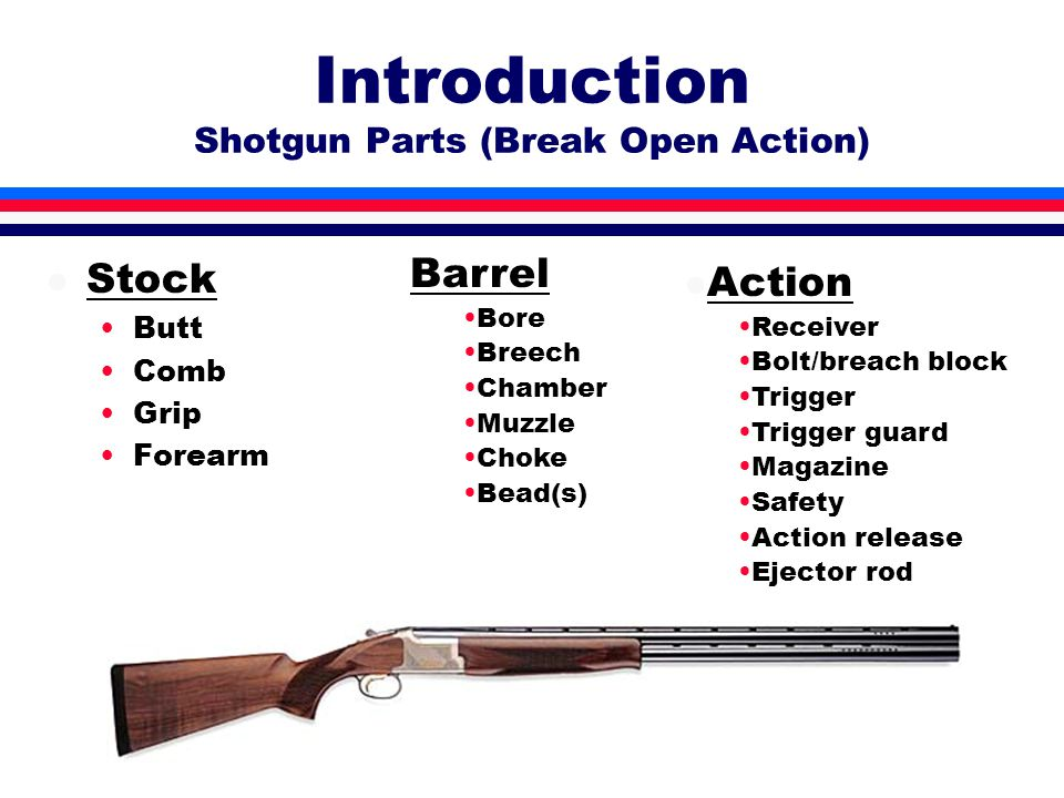 Introduction Shotgun Parts (Semi-Automatic) l Stock Butt Comb Grip Forearm l Action Receiver Bolt/breach block Trigger Trigger guard Magazine Safety Action release Ejector rod Barrel Bore Breech Chamber Muzzle Choke Bead(s)