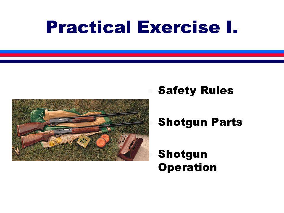 Practical Exercise I. l Safety Rules l Shotgun Parts l Shotgun Operation
