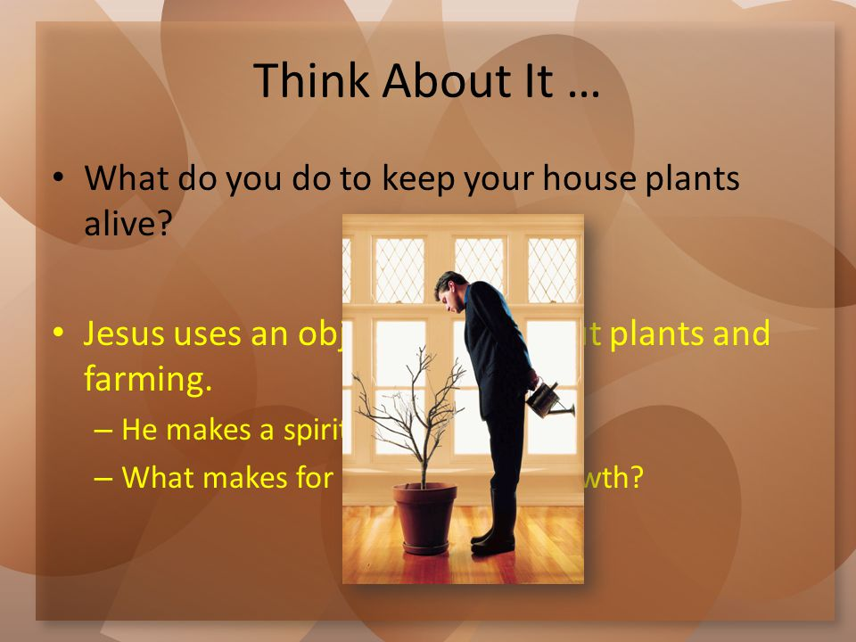 Think About It … What do you do to keep your house plants alive? Jesus uses an object lesson about plants and farming. – He makes a spiritual applicat