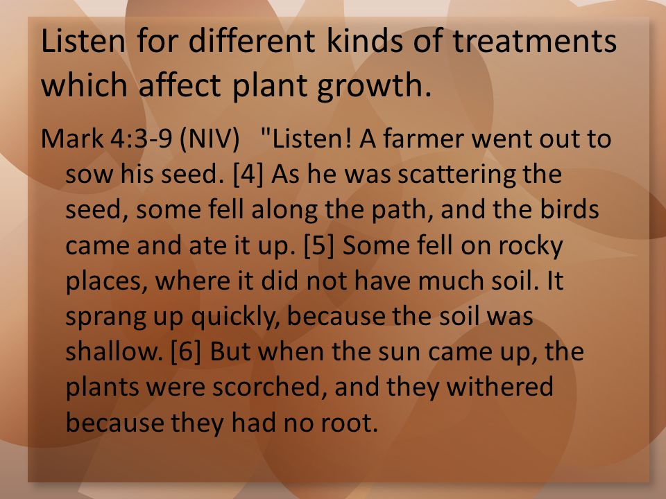 Listen for different kinds of treatments which affect plant growth. Mark 4:3-9 (NIV)