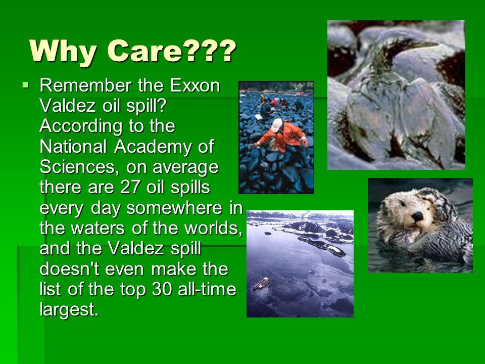Why Care??.  Remember the Exxon Valdez oil spill.