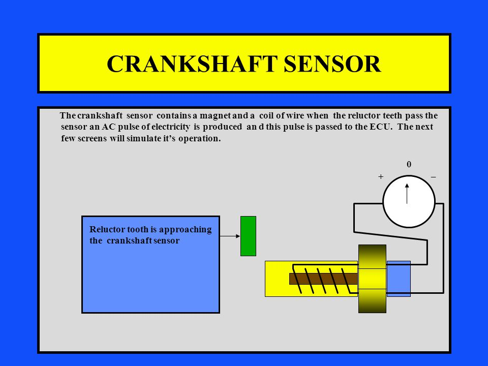 CRANKSHAFT SENSOR The crankshaft sensor contains a magnet and a coil of wire when the reluctor teeth pass the sensor an AC pulse of electricity is produced an d this pulse is passed to the ECU.