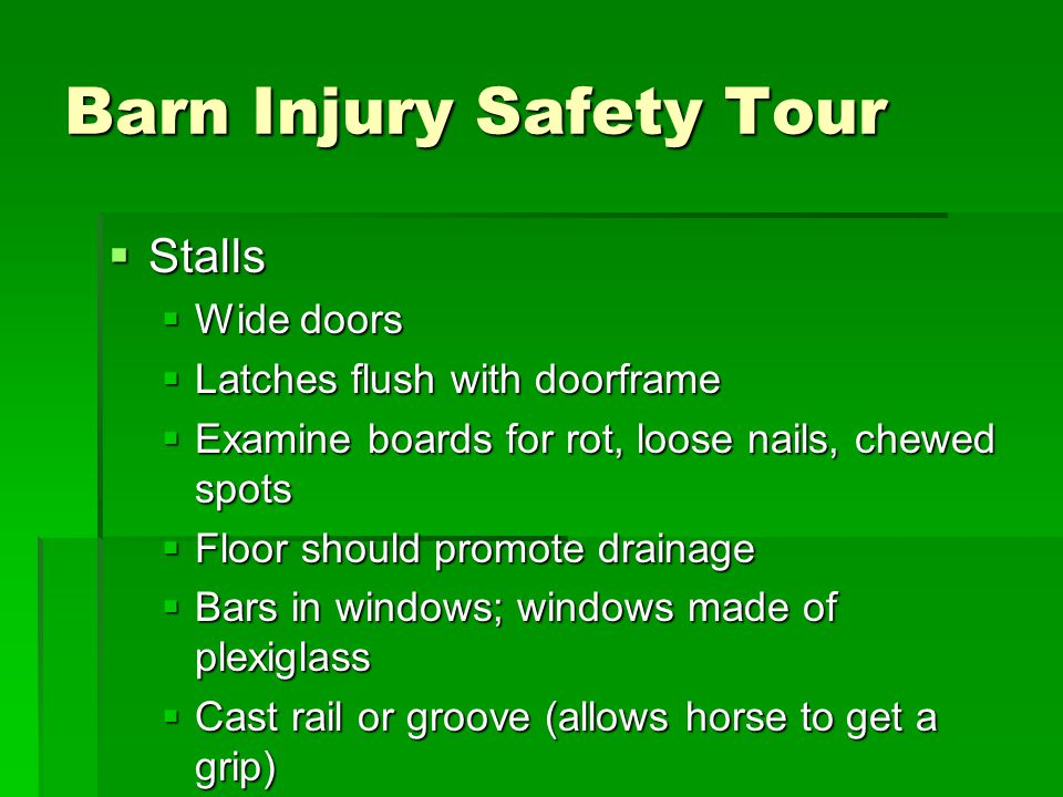 Barn Injury Safety Tour  Stalls  Wide doors  Latches flush with doorframe  Examine boards for rot, loose nails, chewed spots  Floor should promote drainage  Bars in windows; windows made of plexiglass  Cast rail or groove (allows horse to get a grip)