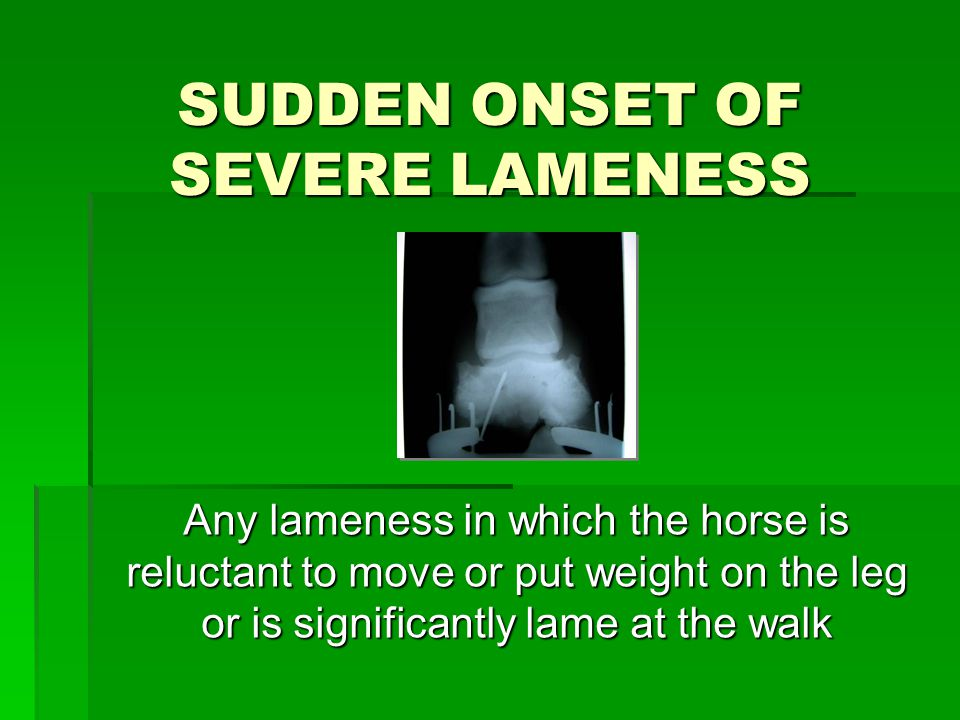 SUDDEN ONSET OF SEVERE LAMENESS Any lameness in which the horse is reluctant to move or put weight on the leg or is significantly lame at the walk Any lameness in which the horse is reluctant to move or put weight on the leg or is significantly lame at the walk