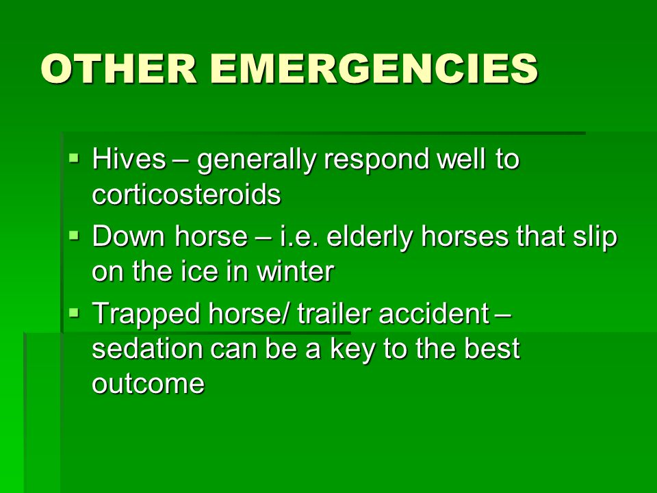 OTHER EMERGENCIES  Hives – generally respond well to corticosteroids  Down horse – i.e.