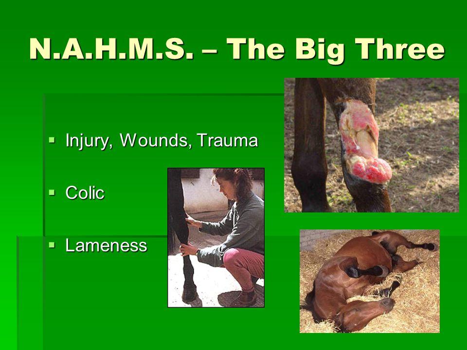 N.A.H.M.S. – The Big Three  Injury, Wounds, Trauma  Colic  Lameness