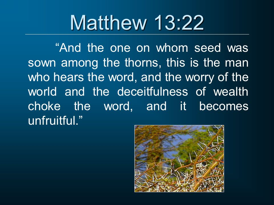 Matthew 13:22 And the one on whom seed was sown among the thorns, this is the man who hears the word, and the worry of the world and the deceitfulness of wealth choke the word, and it becomes unfruitful.